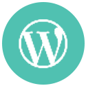 We Are General WordPress Experts
